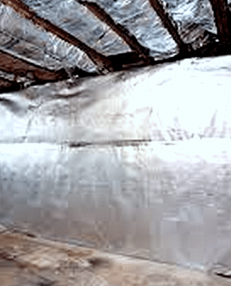 Vapor Barriers for Wine Cellars