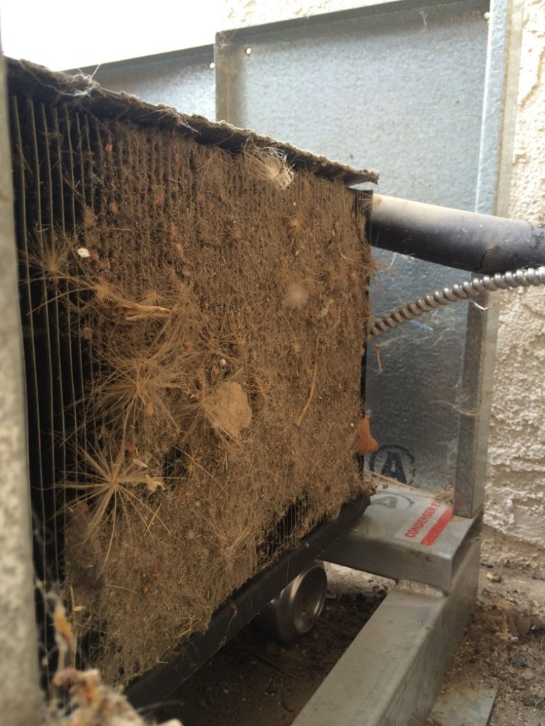 We would have noticed the debris collecting in the cooling systems condensers air filter long before it became critical or even a significant problem